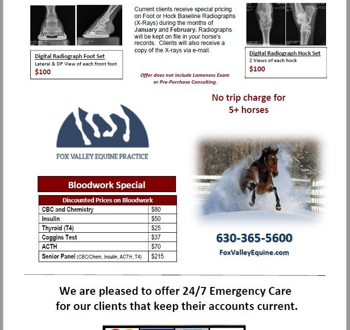 2021 Client Appreciations Specials-Bloodwork & X-rays